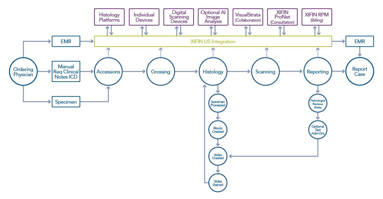 GAP Analysis Workflow