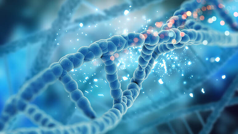 Pathway to Success with Next Generation Sequencing – Reimbursement Insight and IT Strategies
