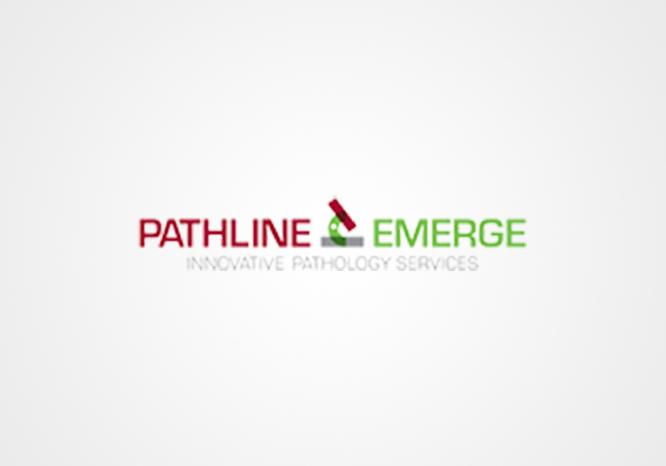 Pathline Emerge