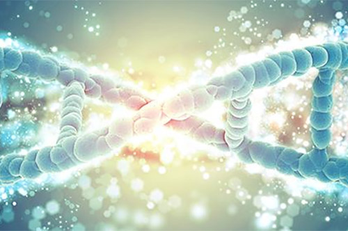Blog Post: How to Prepare Your Lab for Next-Gen Sequencing and Big Data Science